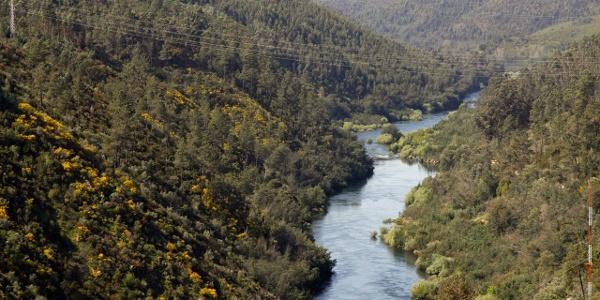 River Zêzere