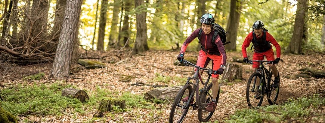Mountainbiker im Pfälzerwald