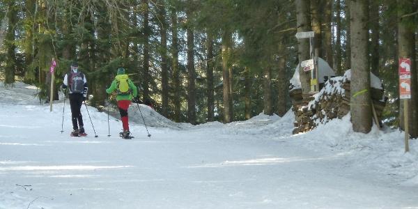 Schneeschuhwanderer am Seibelseckle