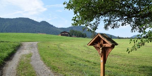 Feldkreuz am Wegesrand in Richtung Vorder-/Hinteregg