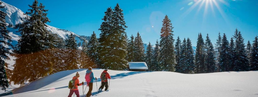 Schneeschuhwanderung Habkern-Lombachalp