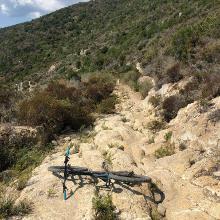 Downhill - eine interessante Steinpassage.