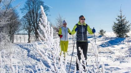 Ski-Langläufer Oben im Harz