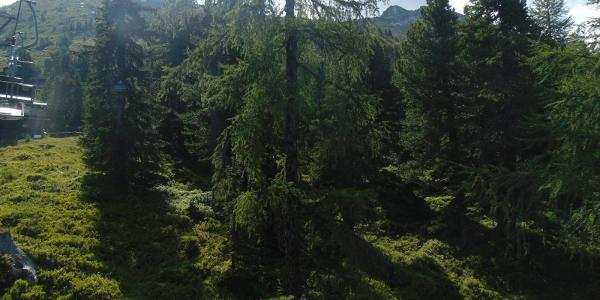 Mit der Bergbahn zur Graukogelhütte (links: Hüttenkogel, rechts Graukogel)