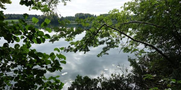 Schloßsee
