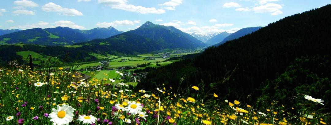 Von Flachau geht es hinauf ins Kleinarler Tal zum Jägersee.