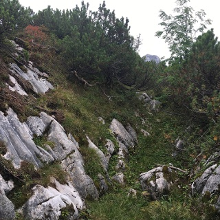 Nur vorm Gipfel muss man einmal östlich drei Meter aus einer Rinne über Felsen unschwierig hochklettern - danach immer mehr oder weniger gerade aus nach Süden dem Pfad und später der Rinne folgen.