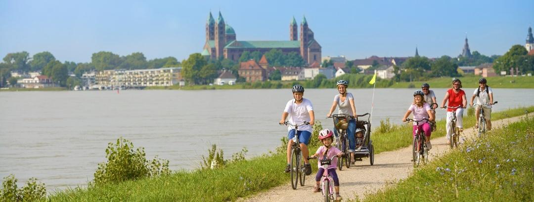 Der Rheinradweg bei Speyer