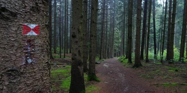 Wanderweg Nr. 1
