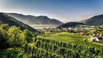 Weinbauort Spitz