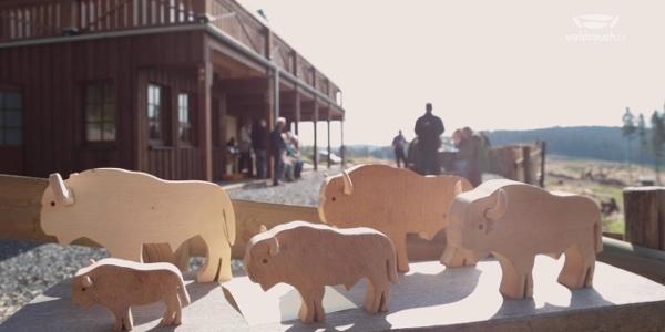 Rothaarsteig-Spur Wisent-Pfad - ein tierisches Wandervergnügen