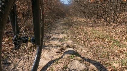 Kövek teszik technikássá a település széléről induló ösvényt