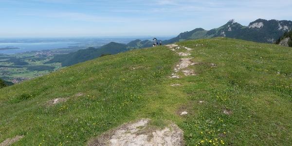 Gipfelblick vom Laubenstein