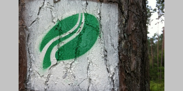 Beispiel für Markierung an Baum oder Fels