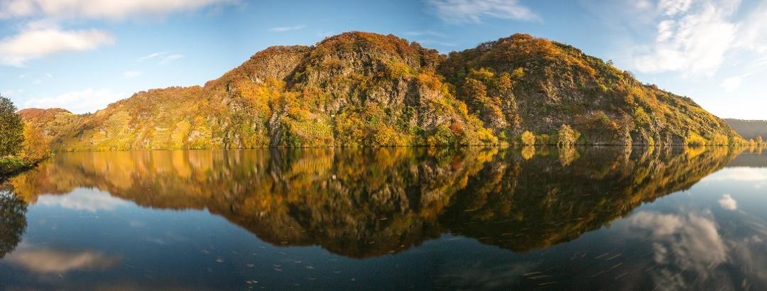Moselloreley im Herbstkleid
