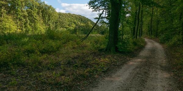 Úton az Iluska-forrás felé a Klotild-barlang környékén