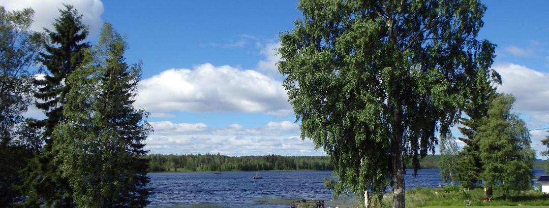 Hällestöm: Östra Langträskvägen