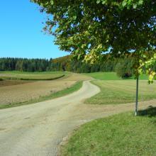 Feldweg auf der Alb-Hochfläche