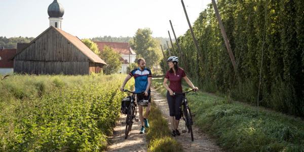 Idyllische Hopfenlandschaft in der Nähe der Hallertauer Hopfentour: die Wallfahrtskirche in Lohwinden bei Wolnzach