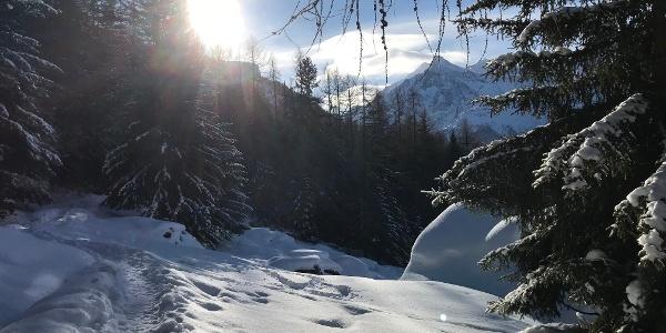 Die verschneite Grächner Landschaft