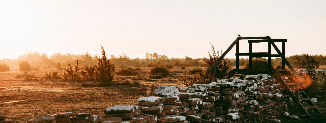 Öland: Steinmauer in Alvaret