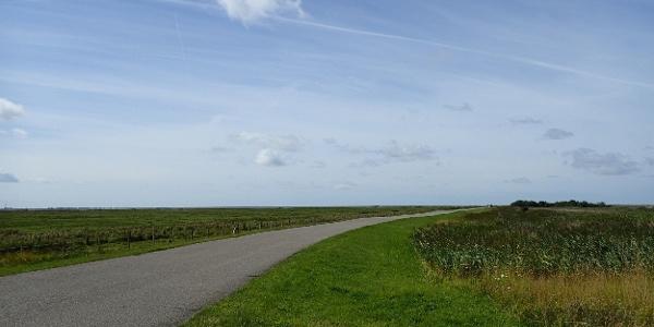 Auf dem Lüttmoordamm in Richtung Nordsee.