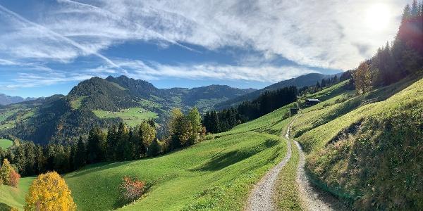 Neader Blick Richtung Alpbach und dem Gratlspitz