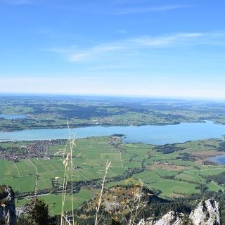 Ausblick vom Tegelberg auf den Forggensee und das Voralpenland