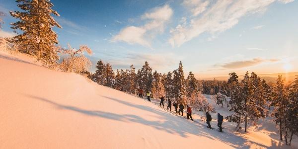 Lumikenkäilijöitä Yllästunturilla
