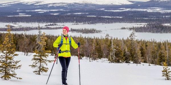 Aakenushiihto, hiihtäjiä maisemapaikalla Haavepalossa Pallas-Yllästunturin kansallispuistossa