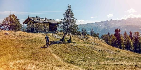 Mountain bikers in the Moosalp region