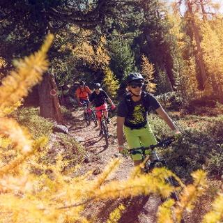 Mountainbikers in der Nähe von Grächen