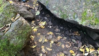 Laub und nasse Steine bedeuten Rutschgefahr