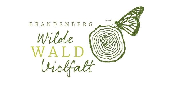 Wilde Wald Vielfalt Brandenberg