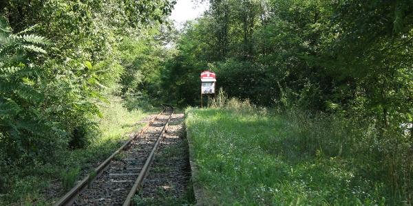 Transzbörzsönyi kisvasút (Petyerák-tanya megállóhely)