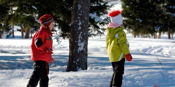 Primi passi sugli sci nel centro fondo Commezzadura, Val di Sole