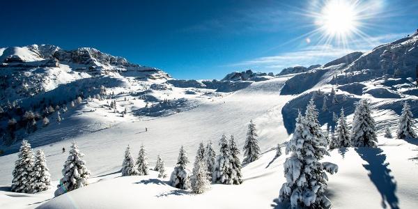 Madonna di Campiglio - Top Skigebiete