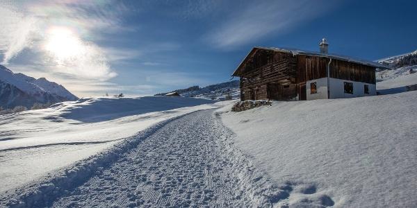Winterwanderweg oberhalb Vignogn