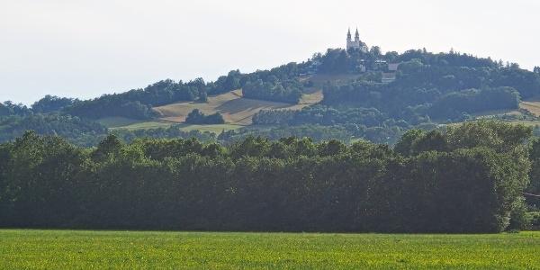 Der Pöstlingberg von Linz-Urfahr aus gesehen. Im Blickfeld die Moarwies'n, die bewältigt werden muß.
