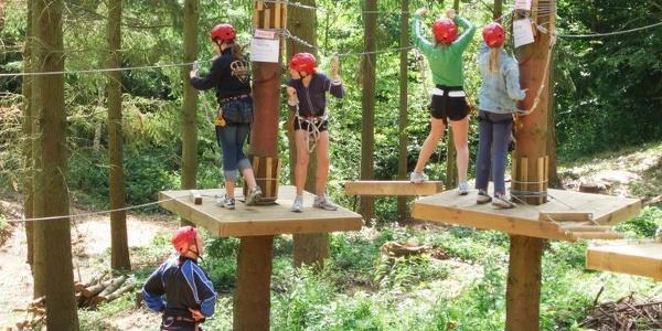 Adventure Forest (2)