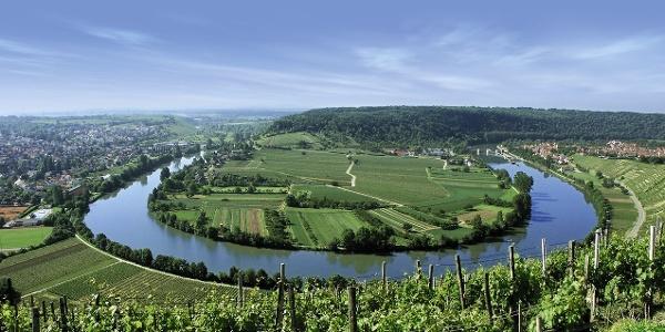 Blick von der Käsbergkanzel auf die Neckarschlaufe