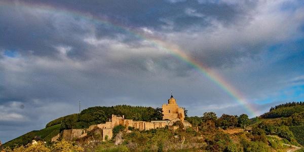 Burganlage Saarburg (01)