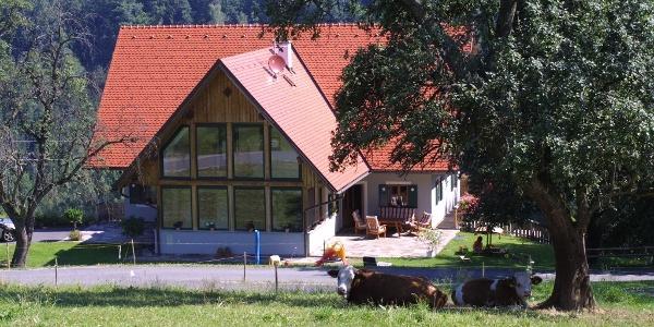 Gästehaus Fabian mit Terrasse