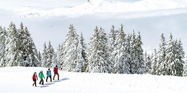 Winterwandern Lenzerheide