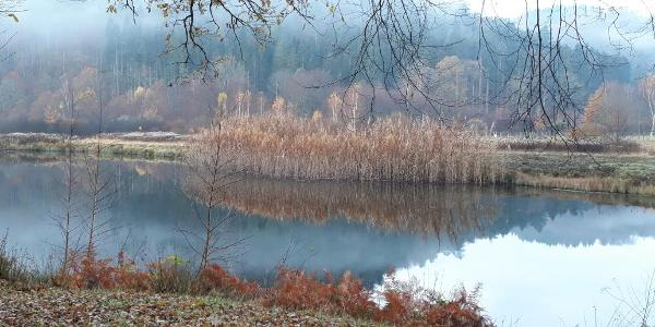Klosterweiher im Spießwoogtal
