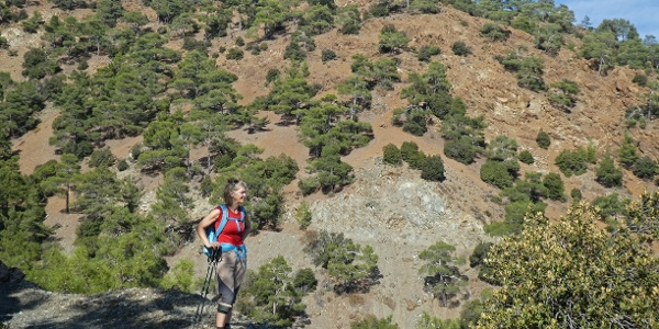 Charakteristische Landschaft im Troodos-Gebirge oberhalb von Agios Nikolaos tis Stegis