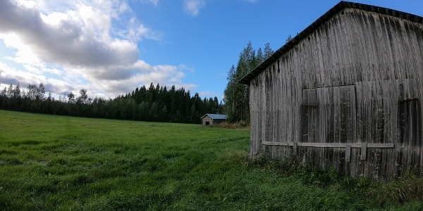 Old barns and a field (Bergö hiking trail)
