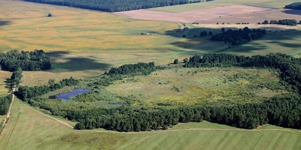 Das Naturschutzgebiet Klinken Plage