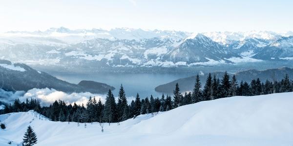 Schneeschuhtraum