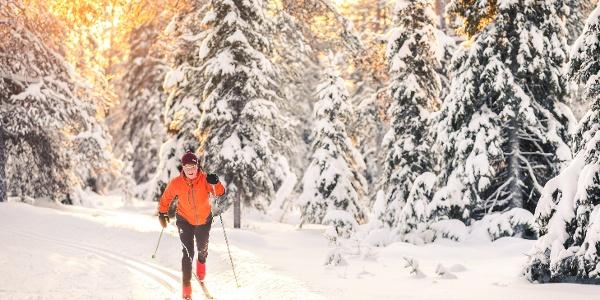 Hiihtäjä Ylläksen lumisissa metsissä Pallas-Yllästunturin kansallispuistossa